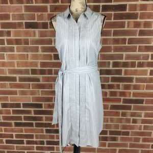 Banana Republic sleeveless Oxford shirt dress